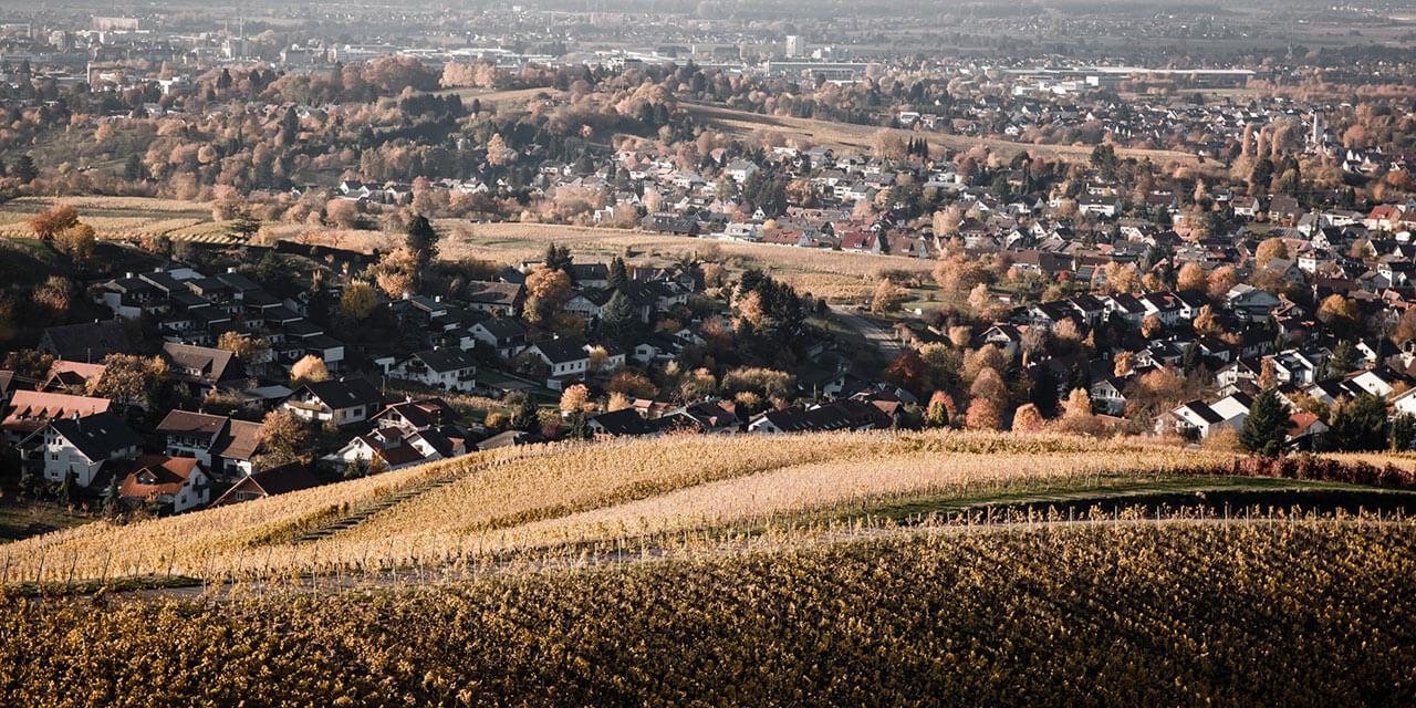 Roomers Baden-Baden Winetour